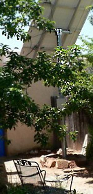 My solar array rises above my pear tree.
